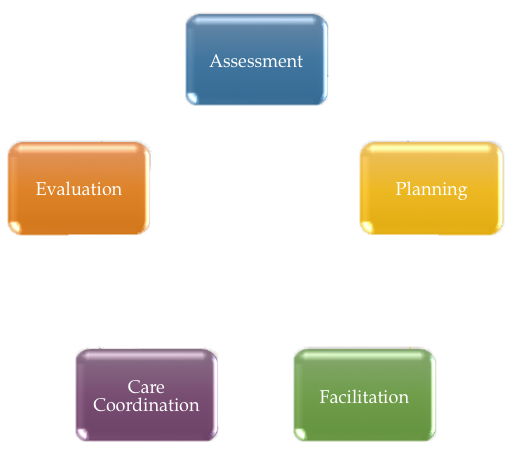 Nurse Medical Case Management Process Cycle